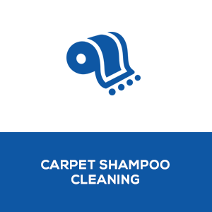 7Carpet_Shampoo_Cleaning2